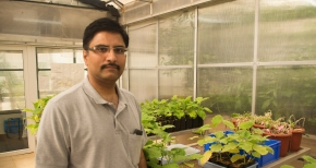 Chemical Ecologist at IISER Pune: Interview with Sagar Pandit