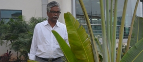 Caring for every plant: Interview with horticulturist Dr. Murari Mohan Jana